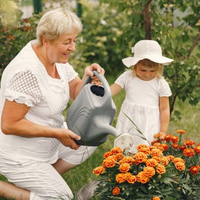 Small girl with senior grandmother gardening in the backyard garden. Child in a white hat.